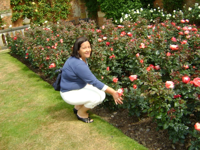roses and marlene