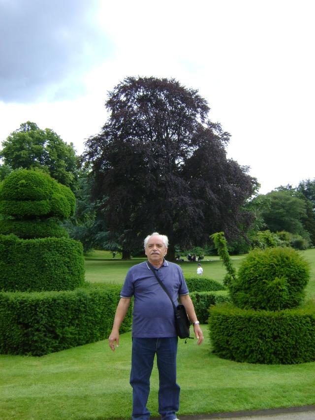 Veloso and gardens